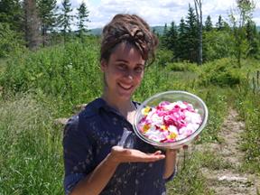 Cueillette de pétales de roses par Megan pour la fabrication d'une crème faciale