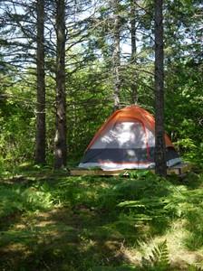 Tent WEB