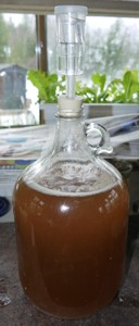 Jug With Airlock