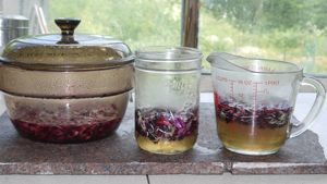3 methods for making Dianthus Syrup WEB