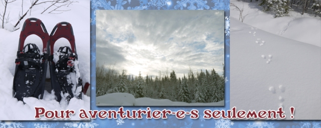 Visit Hivernale Header FRENCH copy